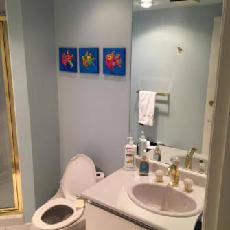 full-condo-renovation-before-guest-bathroom