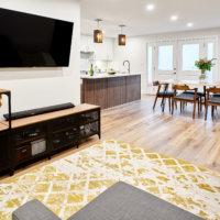 New Basement Living Room