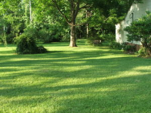revision renovations, backyard, outdoor, outdoor kitchen, vanocuver, living space, renovation, kanorah,